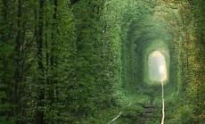 meiles tunelis