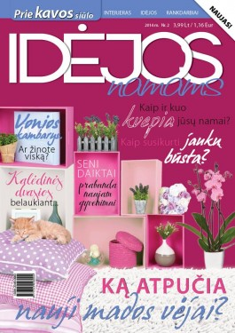 Idėjos namams