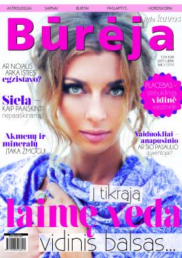 bureja_nr7 virselis
