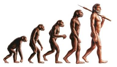 Darvino teorija