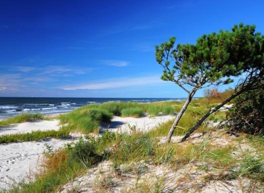 baltijos paplūdimys