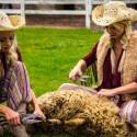 N. Bunkė ir A. Adamovič nesiliauja stebinti: pačios kerpa avis ir ruošia vilną drabužių kūrimui