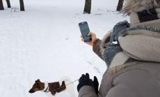 Kaip apsaugoti telefona ziema