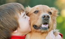 Jūsų naminis gyvūnas (2)