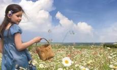 Bacho ziedu terapija