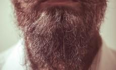 barzda