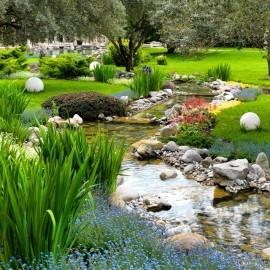 Azijos sodas, ramybe pagal fengsui