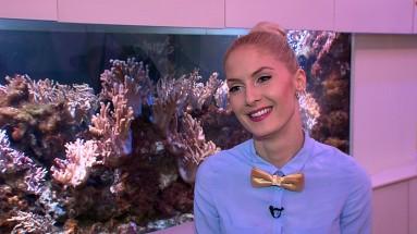 TV3_ZD_Kristina_Ivanova