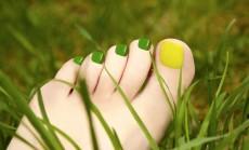 pėdos
