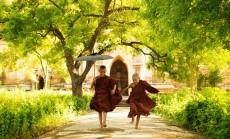 """Tibeto vienuoliai"""
