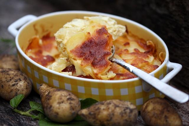 bulvių plokštainis