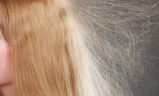 statiški plaukai