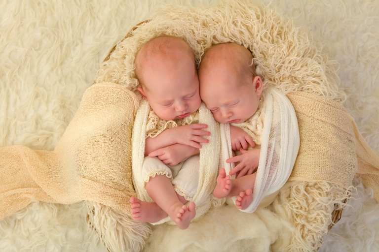 dvyniai