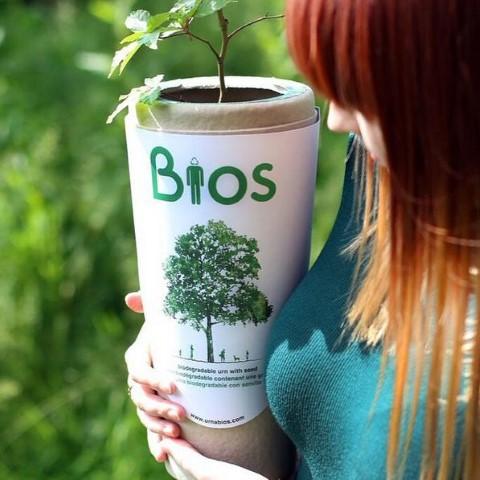 bios-urna (Small)
