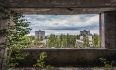cernobylis