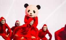 Panda_800x532