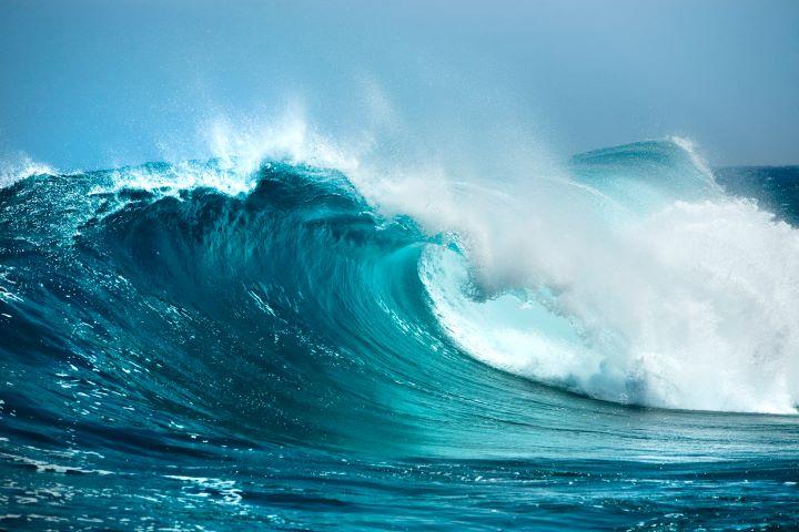 vandenynai